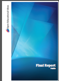 Screenshot final report